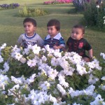 3 Cute babies 150x150 Luqman with Jasim and Hadi in Bukhari Park