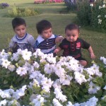 Cute babies 150x150 Luqman with Jasim and Hadi in Bukhari Park