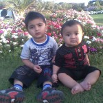 Cute brothers 150x150 Luqman with Jasim and Hadi in Bukhari Park