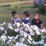 Three kings 150x150 Luqman with Jasim and Hadi in Bukhari Park